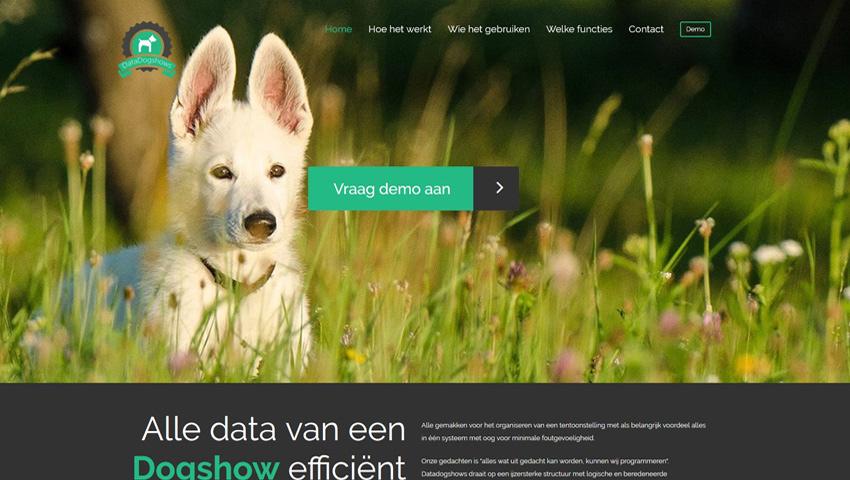Datadogshows